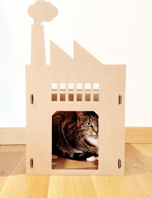 DIY Cardboard Cat House Plans PDF Download diy wood frame house layout plan   bawdy60gqk